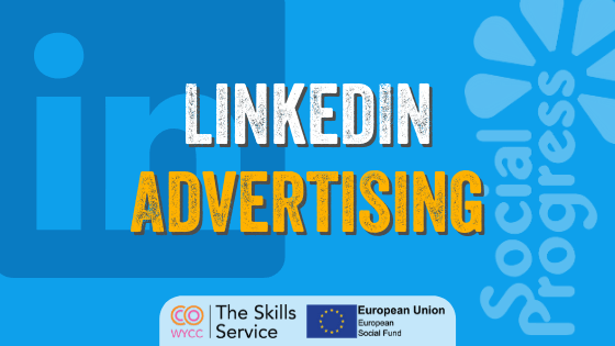 LinkedIn Advertising (Norm)