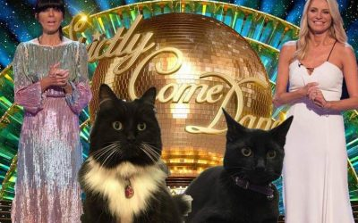 Strictly Come Dancing – BBC Announce First Feline Contestants